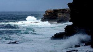 Avustralya'da sörfçü köpekbalığı saldırısında öldü