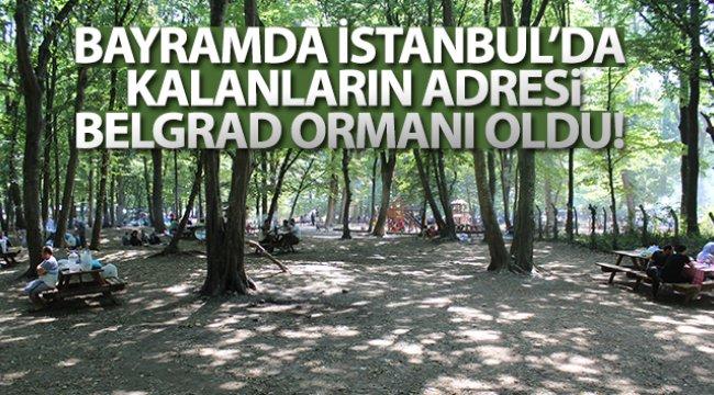 Kurban Bayramı'nı İstanbul'da geçirenler Belgrad Ormanı'na akın etti