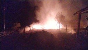 Kastamonu'da çıkan yangında 5 samanlık ve 500 balya saman küle döndü